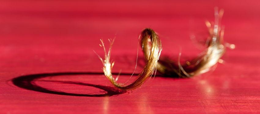 Spécial cheveux frisés